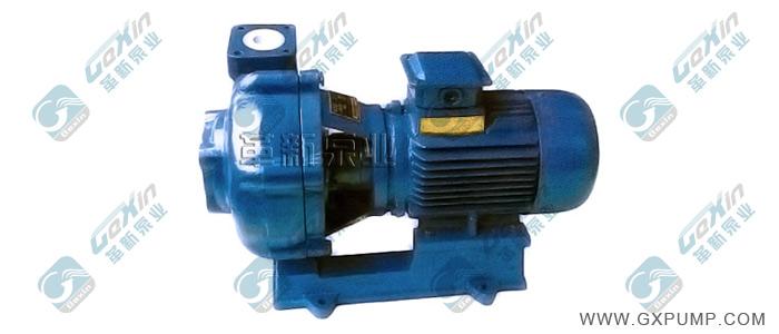 HNTB-ZK耐酸陶瓷泵