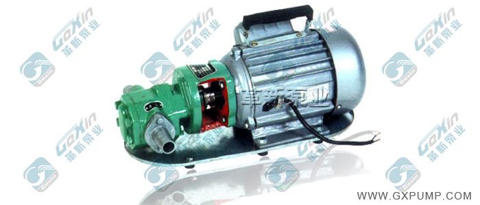 WCB手提式齿轮油泵(微型)